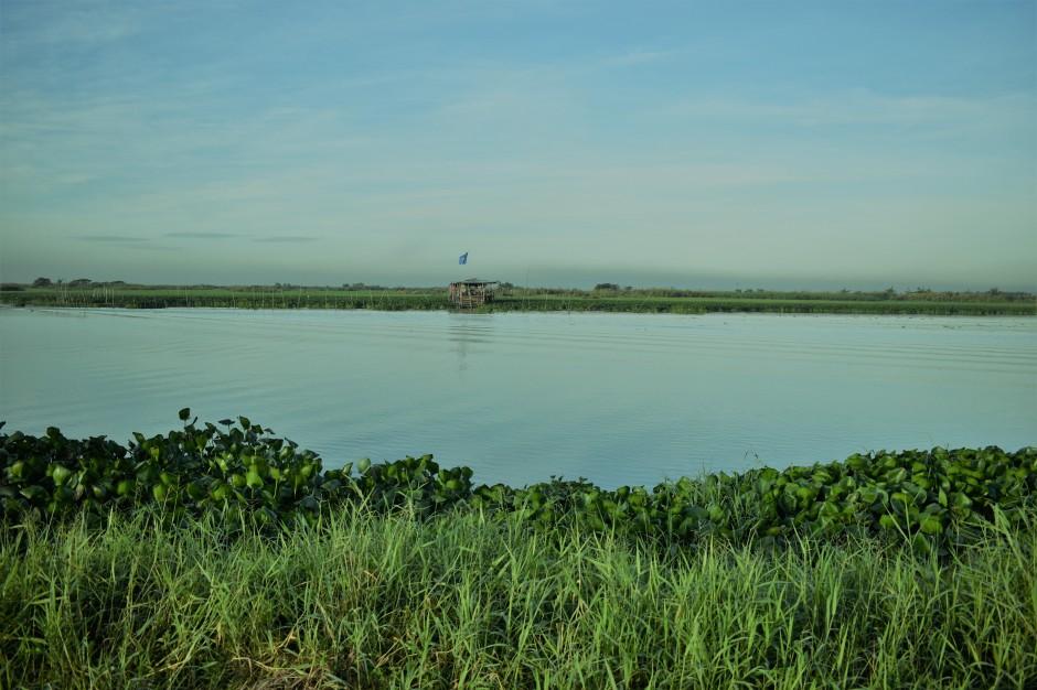 angono lake
